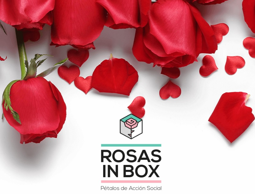 rosas-in-box
